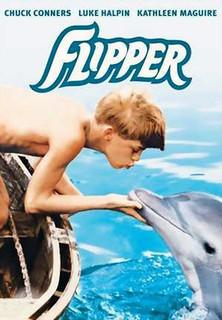 Flipper stream