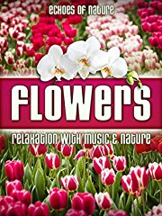 Flowers: Echoes of Nature Relaxation with Music & Nature stream