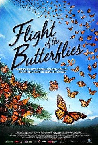 Flug der Schmetterlinge stream