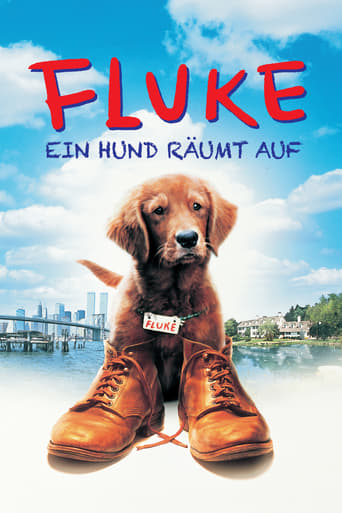 Fluke - Ein Hund räumt auf Stream