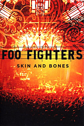 Foo Fighters - Skin and Bones - stream