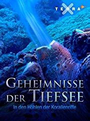 Film Geheimnisse der Tiefsee, In den Höhlen der Korallenriffe Stream