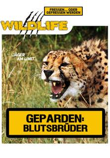 Geparden: Blutsbrüder stream