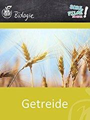 Getreide - Schulfilm Biologie stream