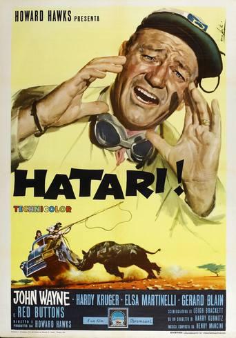 Hatari! stream