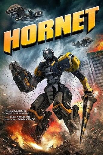 Hornet stream