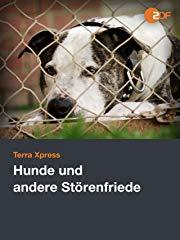 """Hunde und andere """"Störenfriede"""" stream"""