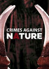Illegaler Tierhandel im Visier stream