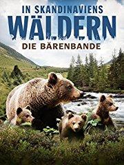 In Skandinaviens Wäldern - Die Bärenbande stream