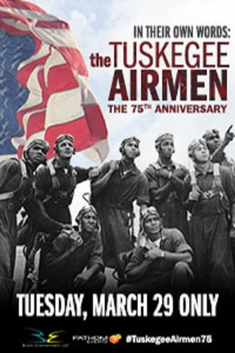 In Their Own Words: The Tuskegee Airmen stream