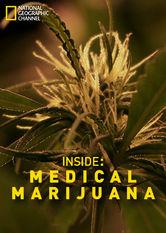 Inside: Medical Marijuana stream