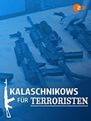 Kalaschnikows für Terroristen - Waffenschmuggel in Europa Stream