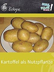 Kartoffel als Nutzpflanze - Schulfilm Biologie stream