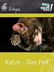 Katze - Das Fell - Schulfilm Biologie stream