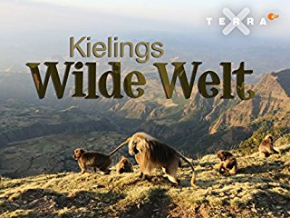 Kielings wilde Welt stream