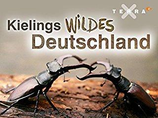 Kielings wildes Deutschland Stream