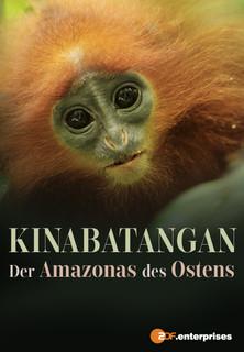 Kinabatangan - Der Amazonas des Ostens stream