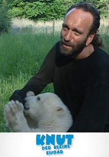 Knut der kleine Eisbär - stream