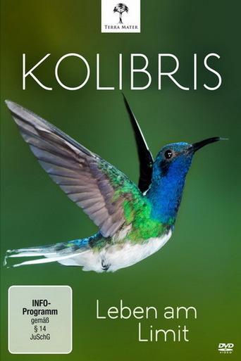 Kolibris - Leben am Limit stream