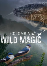 Kolumbien: Wilde Magie stream