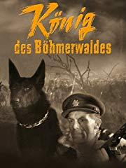 König des Böhmerwaldes Stream