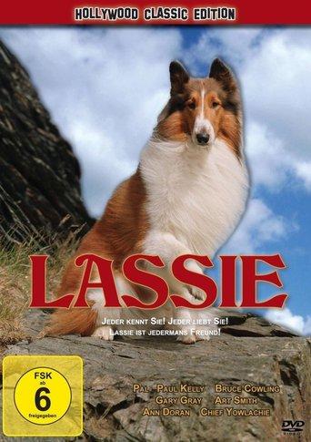 Lassie - Ein neuer Anfang stream