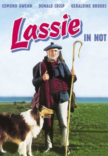 Lassie in Not - stream