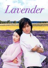 Lavendel Stream