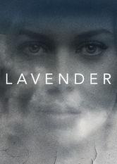 Lavender - stream