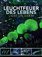 Leuchtfeuer des Lebens - Light on Earth stream