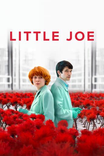 Little Joe stream