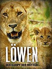 Löwen - Der Kampf der Mütter stream