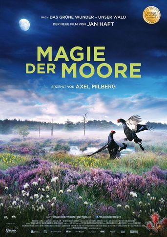 Film Magie der Moore Stream