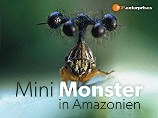 Mini-Monster in Amazonien stream