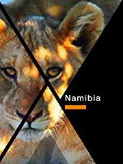 Namibia stream