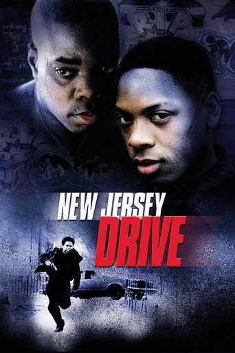 New Jersey Drive stream