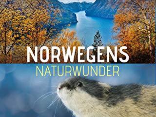 Norwegens Naturwunder stream