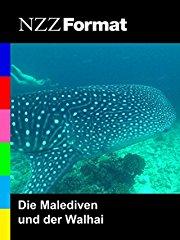 Film NZZ Format - Die Malediven und der Walhai Stream