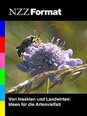 NZZ Format - Von Insekten und Landwirten: Ideen für die Artenvielfalt stream