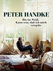 Peter Handke – Bin im Wald. Kann sein, daß ich mich verspäte stream