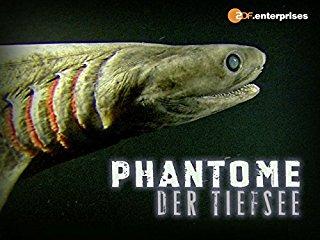 Phantome der Tiefsee stream