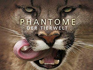 Phantome der Tierwelt stream