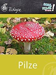 Pilze - Schulfilm Biologie stream