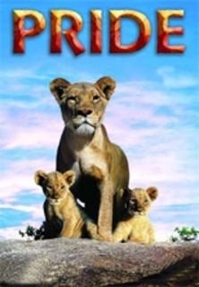 Pride - Das Gesetz der Savanne stream