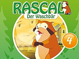 Rascal, der Waschbär stream