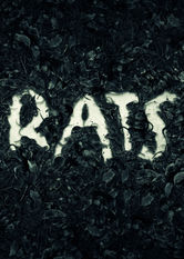 Rats stream