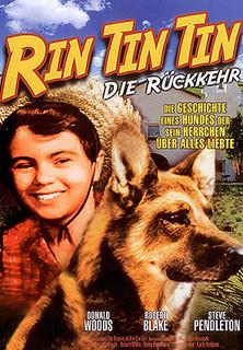 Rin Tin Tin - Die Rückkehr stream