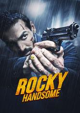 Rocky Handsome stream