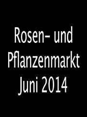 Rosen- und Pflanzenmarkt Juni 2014 Stream