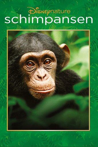 Schimpansen stream